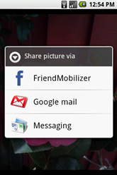 friends mobilizer