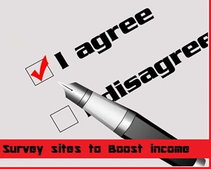 survey sites to boost income 2013 Rich List of Survey Sites to Boost Income